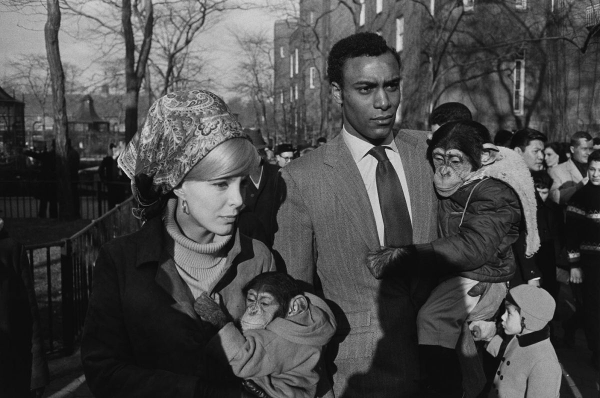 Garry Winogrand exhibitions