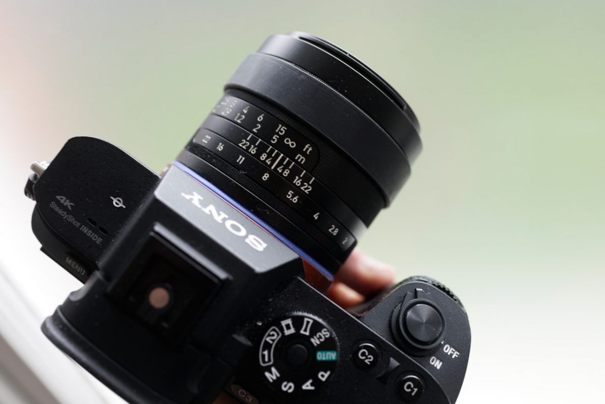 Sony Camera and Lens In Use: Part Two